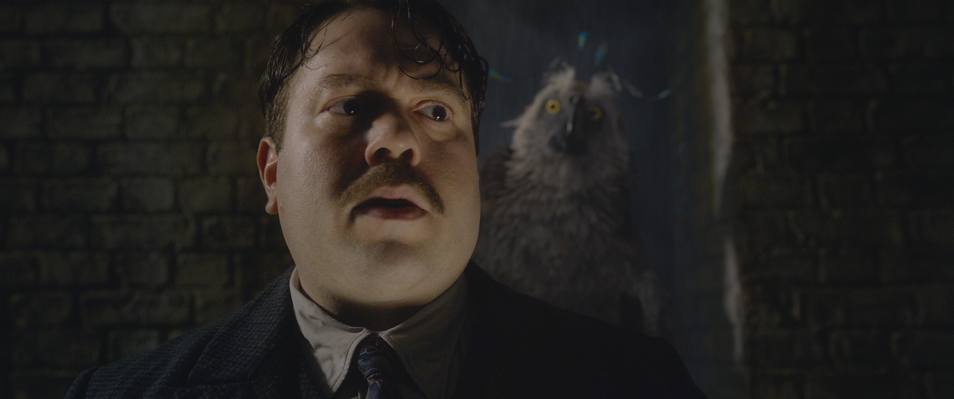 Dan Fogler as Jacob Kowalski